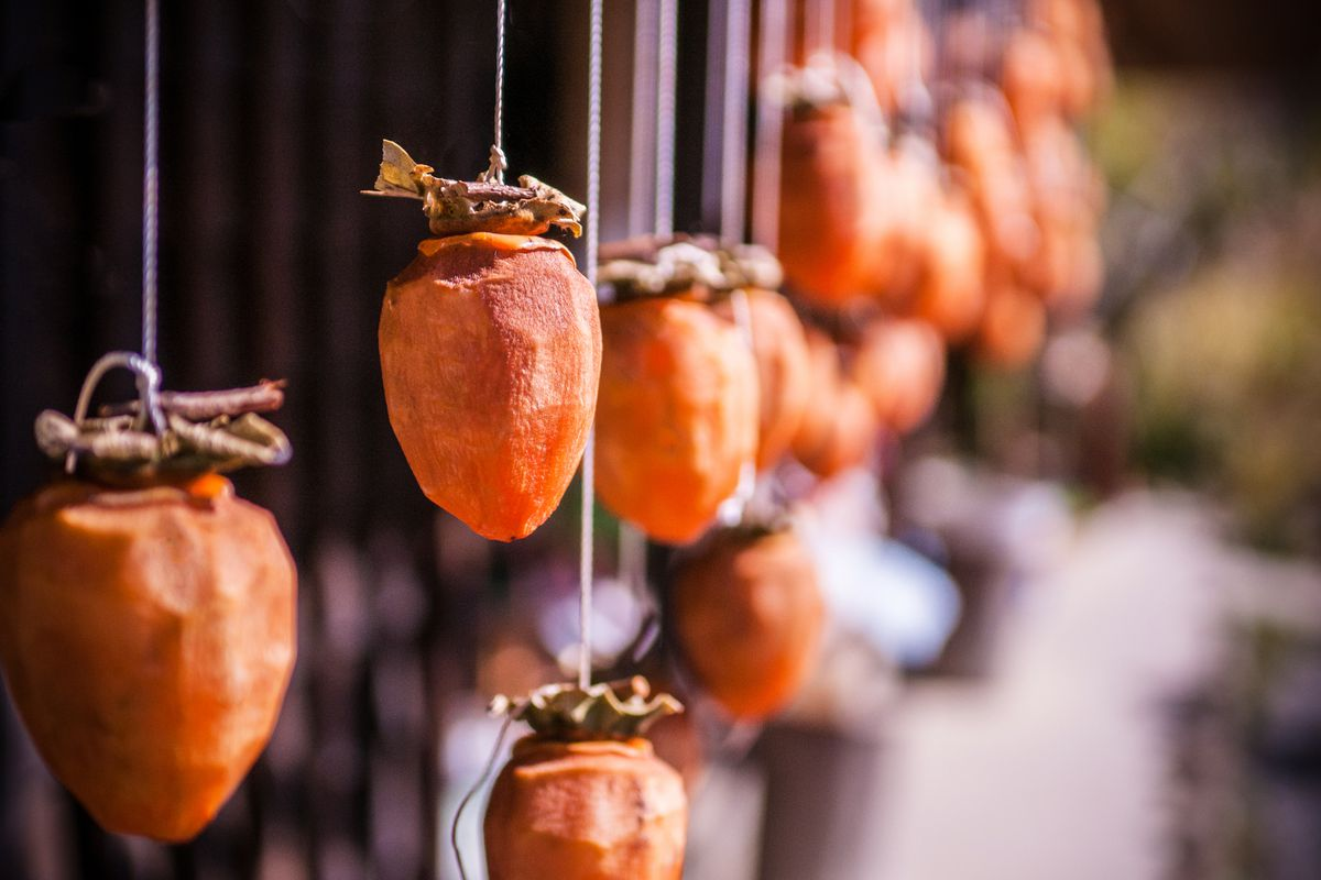 Drying persimmons hanging from strings start to form a sugar bloom on their exteriors.