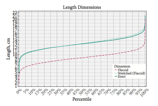 New Study Reveals Average Penis Size An Interview With The Ruler Salesman Having Best -8756