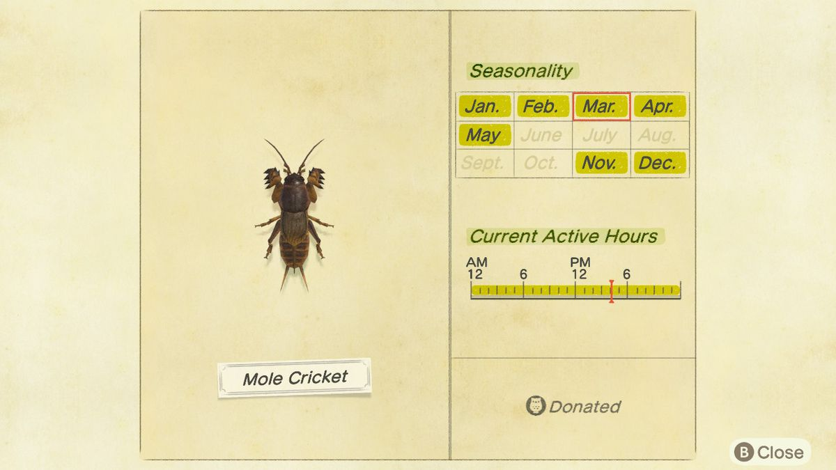 The Critterpedia entry for the mole cricket in Animal Crossing: New Horizons