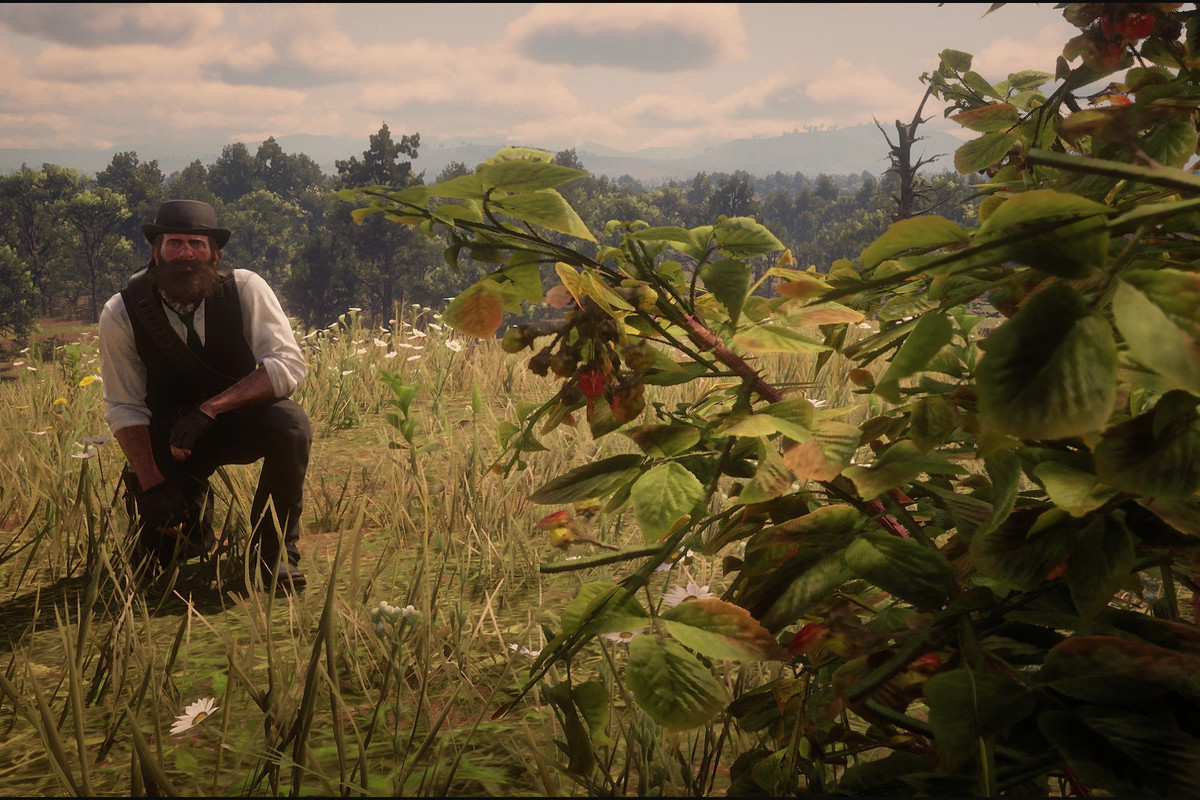 Red Dead Redemption 2 Herbalism Challenge 3 Guide Every
