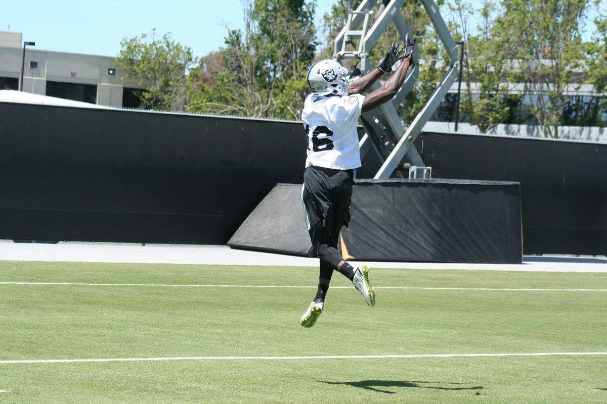 on sale 8f5ae 63e7f Raiders eager to see camp standout Johnny Holton make debut ...