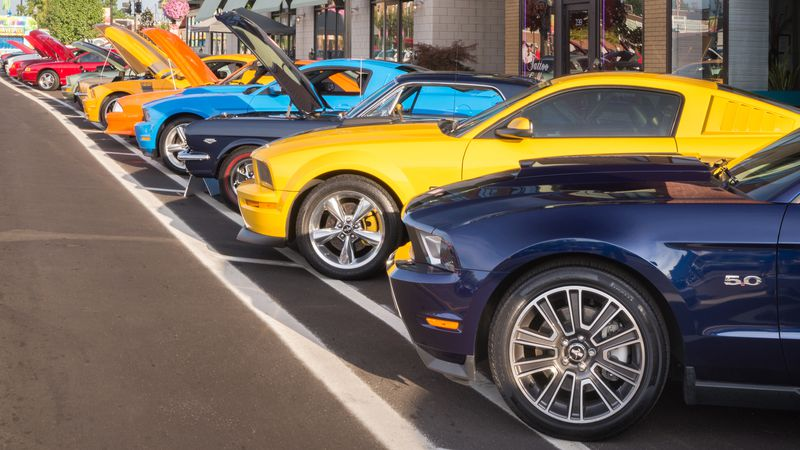 All varieties of Mustangs parked along Woodward for the Dream Cruise