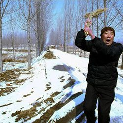 This undated photo provided by the China Aid Association is said to show a guard expelling visitors from the home of blind Chinese legal activist Chen Guangchen in Shandong Province, China. Chen, a well-known dissident who angered authorities in rural China by exposing forced abortions, made a surprise escape from house arrest on April 22, 2012, into what activists say is the protection of U.S. diplomats in Beijing, posing a delicate diplomatic crisis for both governments.