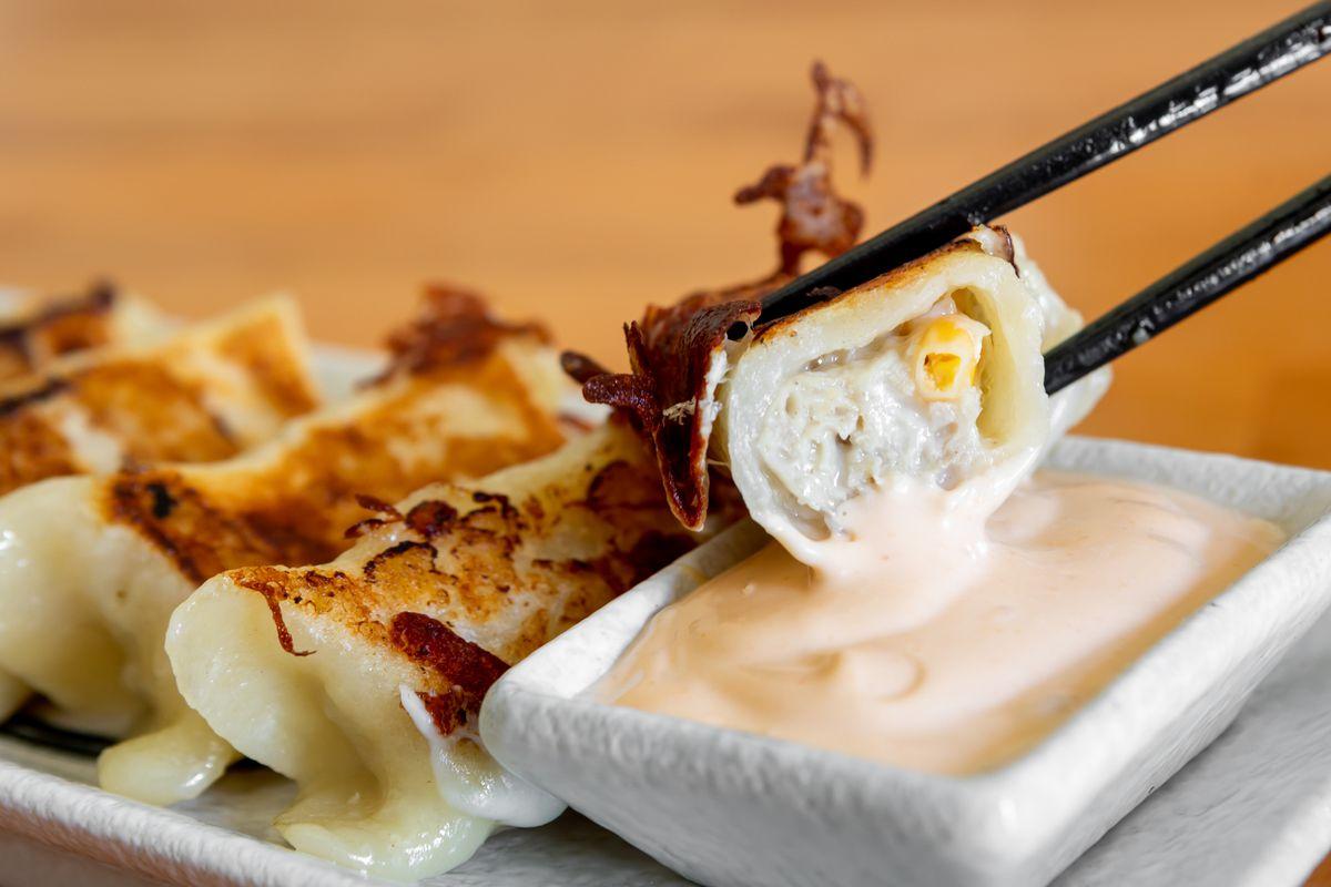 Un potsticker, tenu par une paire de baguettes, trempé dans une sauce crémeuse