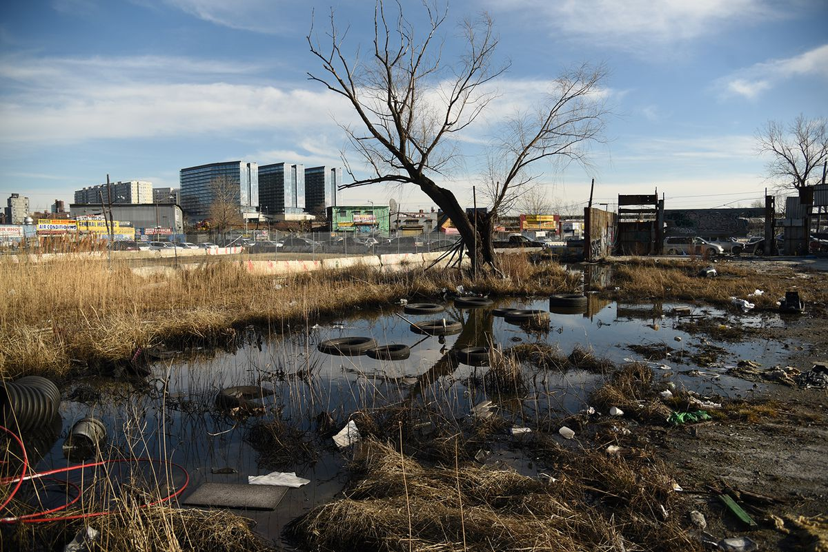 A landscape with bare trees, potholes full of water, and tires and trash on the street. Three glass buildings rise in the background.