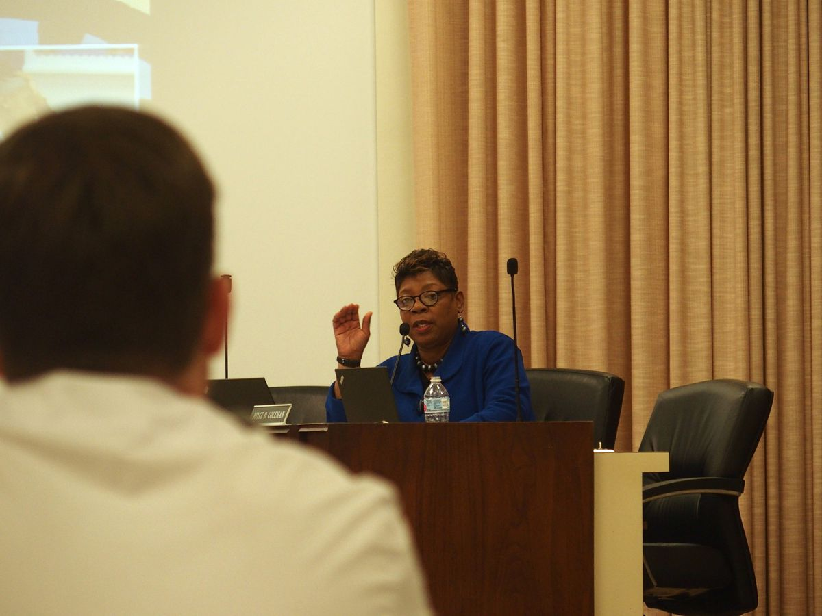 Shelby County Schools board member Althea Greene speaks during a hearing for Veritas College Preparatory, a charter school in South Memphis.