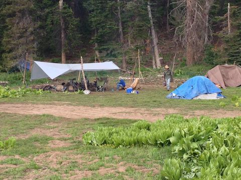 Rainbow Family gathering prompts concerns, action from