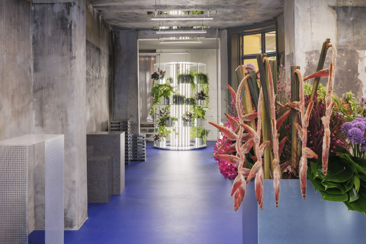 Shot of minimalist space with raw concrete walls, blue vinyl floors, and sculptural podiums, with a planter of flowers in the foreground, and an illuminated plant stand in the back.