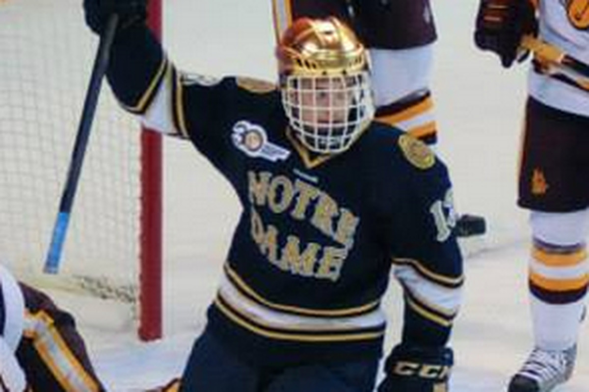 Notre Dame sophomore Vince Hinostroza had the first goal of the game.
