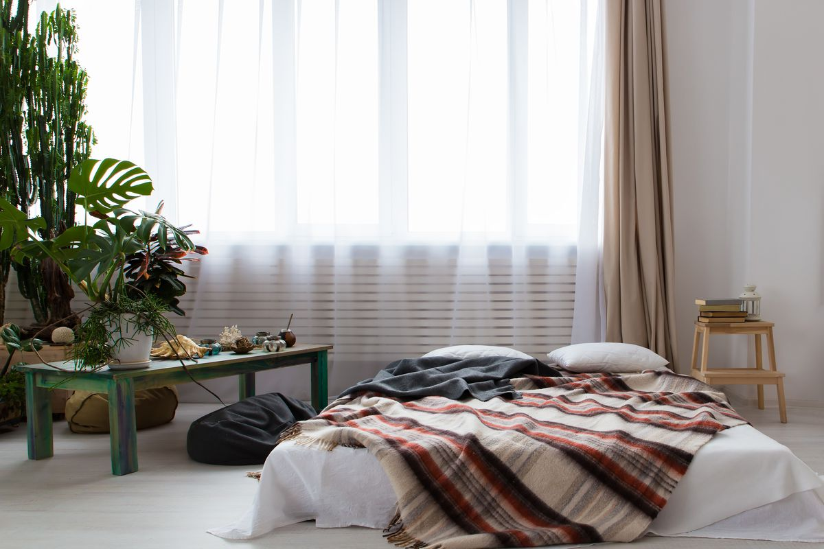 Interior of a modern studio apartment with lots of plants and a bed on the floor.