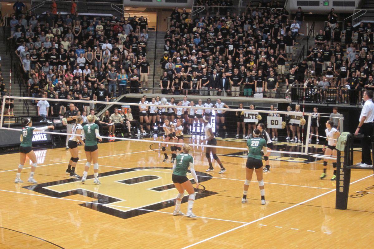 Purdue Volleyball Mackey