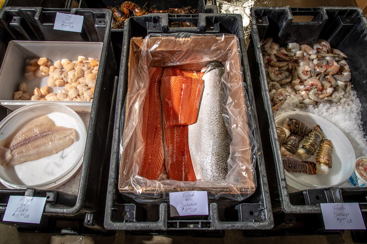 A display of fish for sale in F. Rozzo and Sons's new retail location in Chelsea