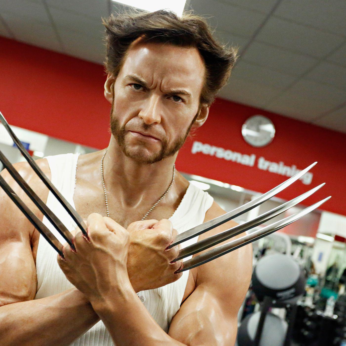 The Wolverine Diet Vox