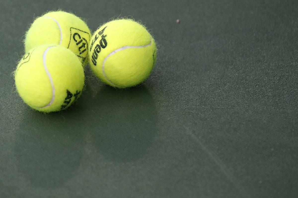 Tennis: Citi Open-Duckworth v Smyczek