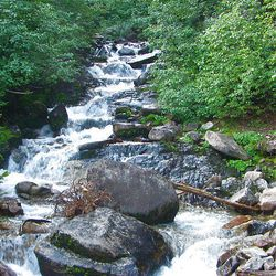 3. This is the view from the footbridge over White Pine Creek near Red Pine junction.