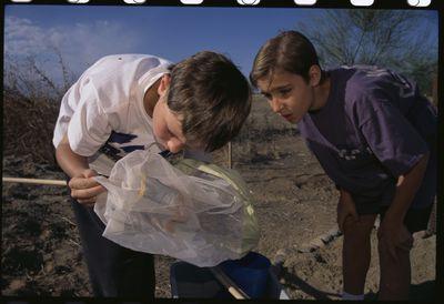 Children Checking a Net