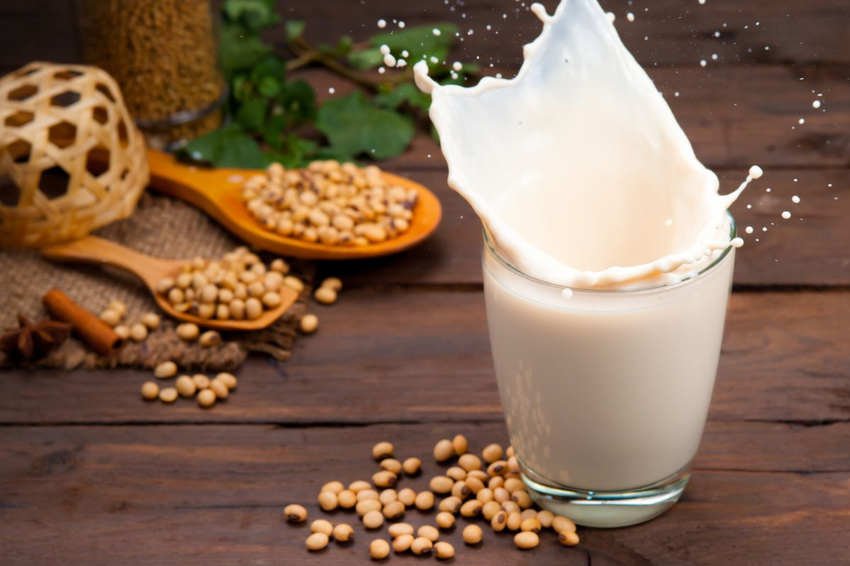 Should you drink soy or cow's milk? Here's what the evidence says. - Vox