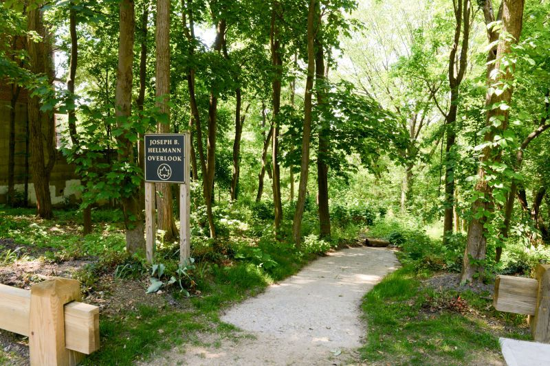 """An """"Alley Pond Park"""" sign at the entrance of a wooded path greets visitors. Beyond it, a thicket of greens and shrubs."""