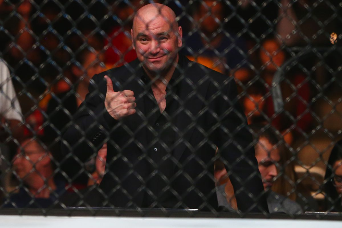 Police arrest world's most prolific UFC pirate - MMAmania com