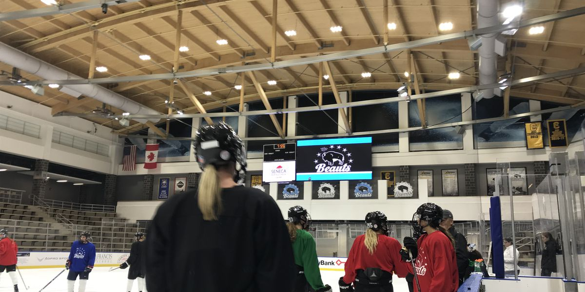 Buffalo Beauts bag Worcester Blades backstop - Die By The Blade