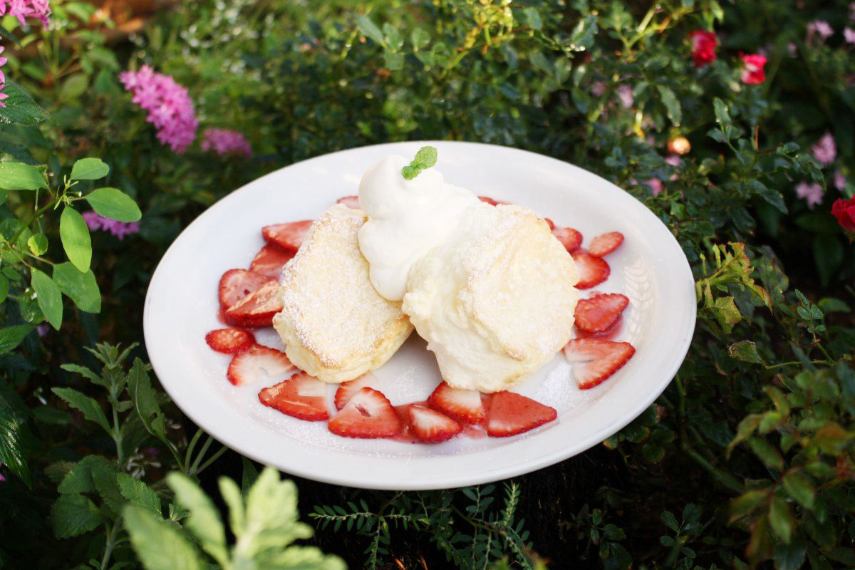 A plate of thick wobbly pancakes surrounded by sliced strawberries and topped with whipped cream and a leaf of mint. The plate sits in the middle of flower bushes