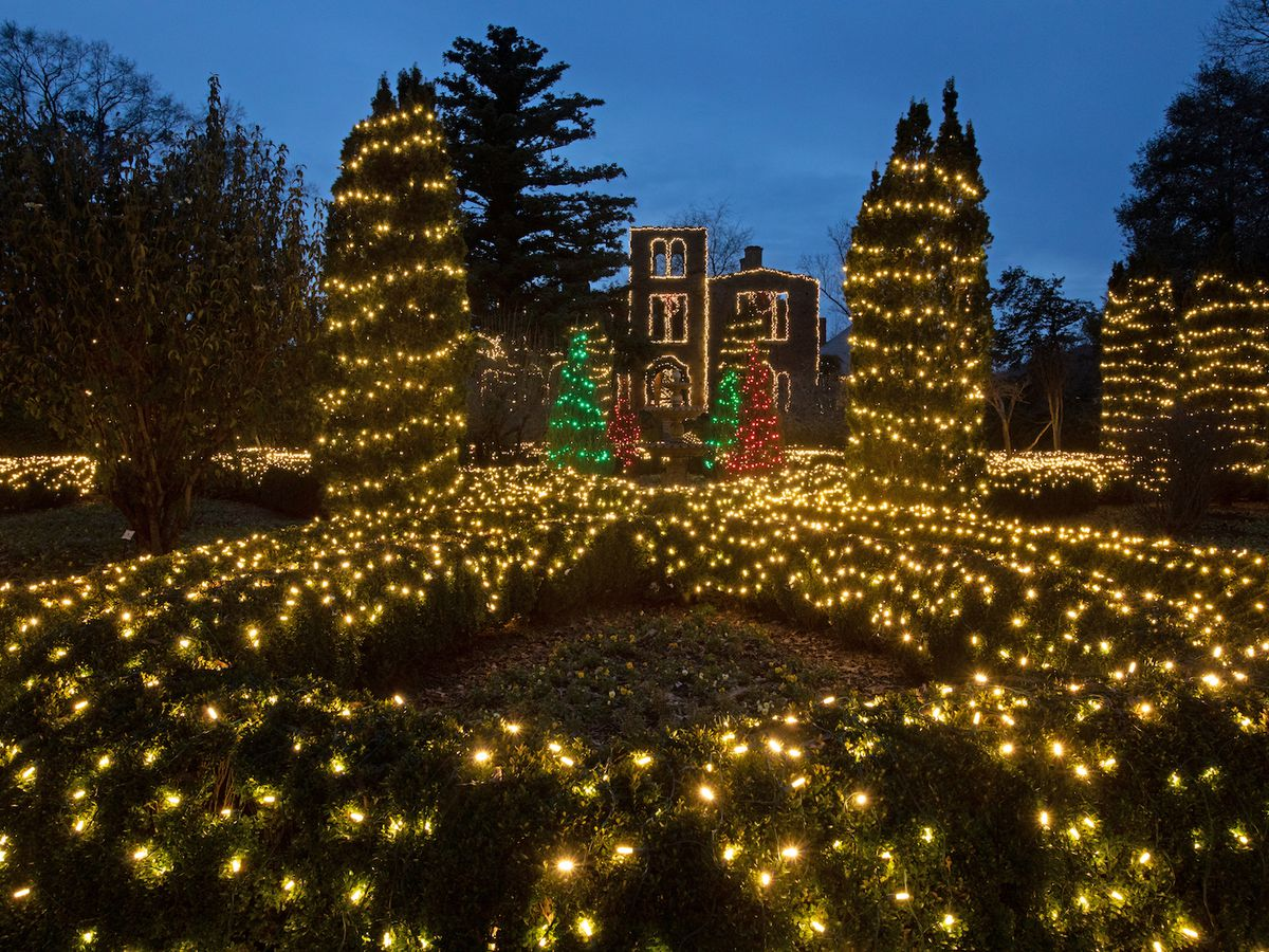 Building ruins and surrounding bushes and trees covered in Christmas lights.