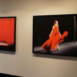 Josh Goldman's photography