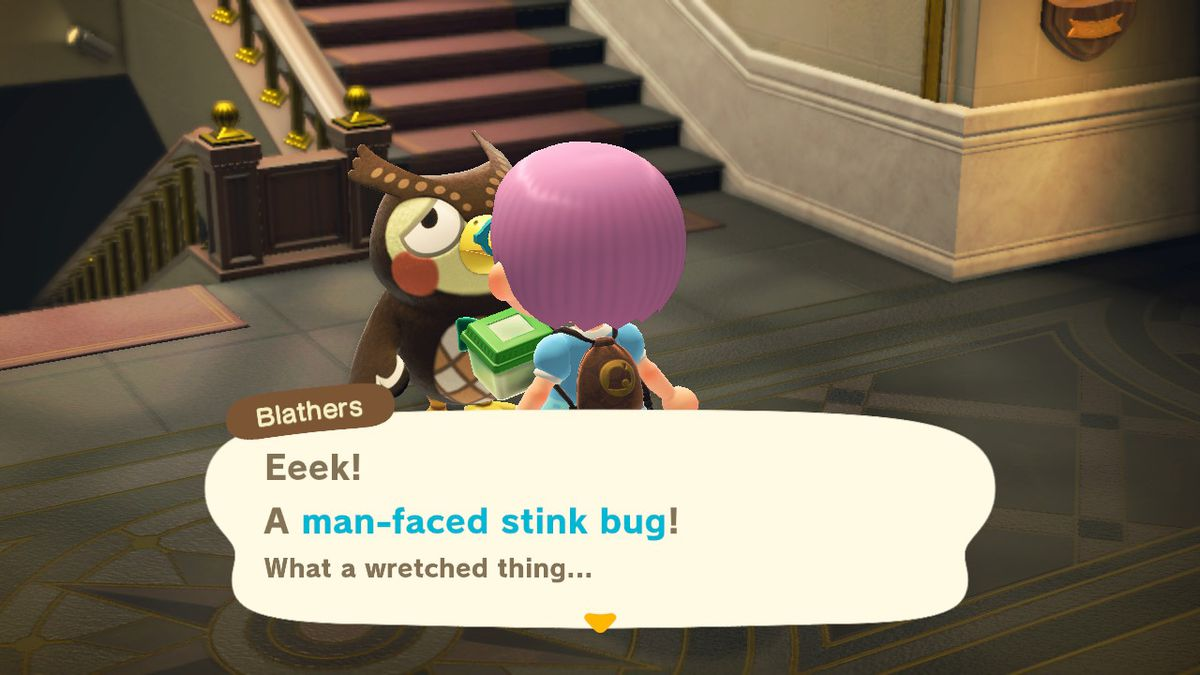 Animal Crossing - Blathers the owl accepts a Man-Face Stink Bug from the player