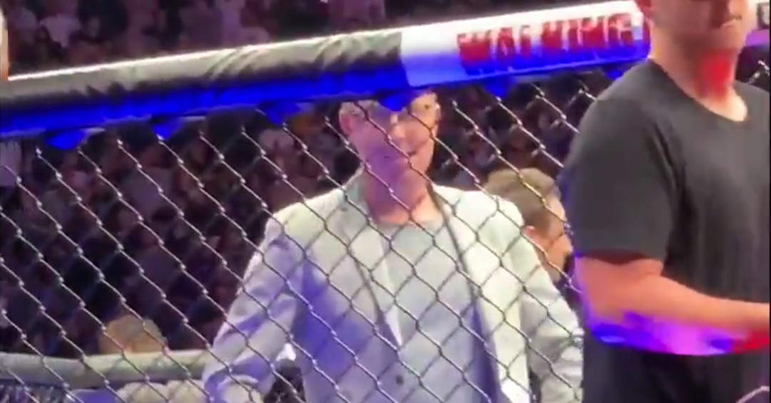Video: Conor McGregor fan runs into cage during UFC 229 post-fight brawl - Blood...
