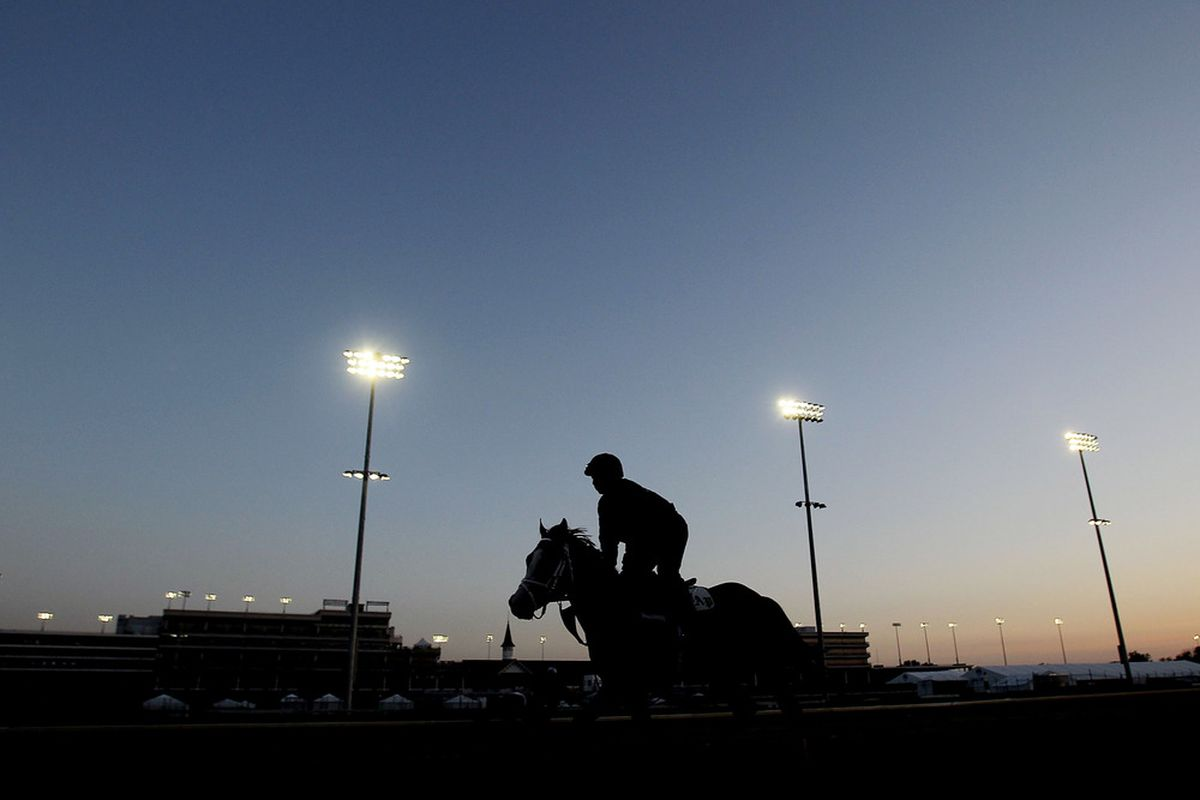 LOUISVILLE, KY - APRIL 29:  A horse is taken to the track during the morning exercise session at Churchill Downs on April 29, 2011 in Louisville, Kentucky.  (Photo by Matthew Stockman/Getty Images)