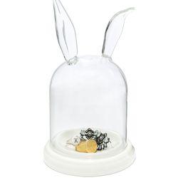 "Rabbit ears glass display case, <a href=""http://www.baublebar.com/rabbit-ears-glass-display-case.html"">$36</a>"