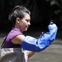 Suzan Tahir, environmental scientist for the Utah Department of Environmental Quality's water quality division, takes water samples from the Jordan River in Salt Lake City on Monday, July 18, 2016.