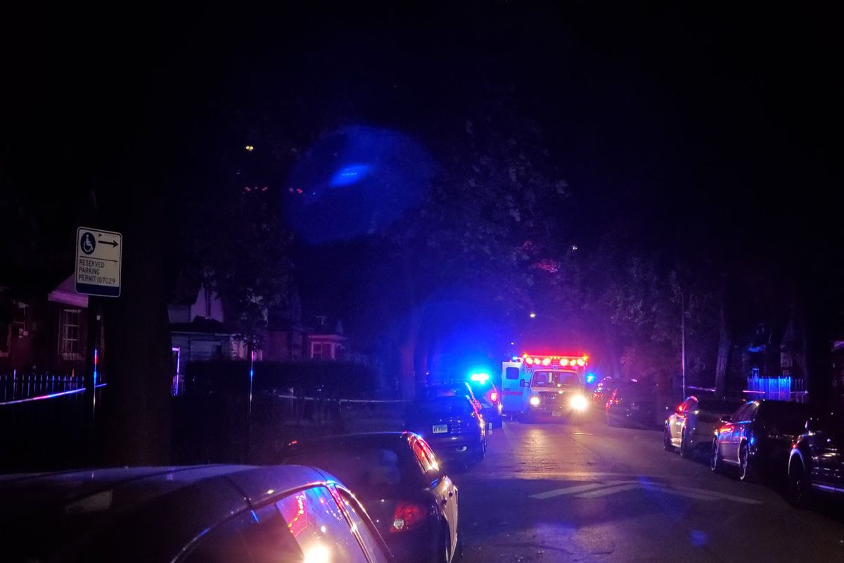 Chicago police investigate the scene where a man was found shot to death in Gresham on the South Side.