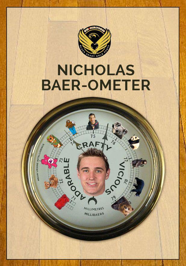 baerometer_crafty