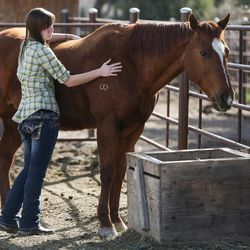 Abby Petchinsky, 21, of Mt. Pleasant, pets a horse used in equine-assisted therapy sessions with Brittani Frade, CMHCi, and Jolene Green, LCSW, at The Barn in South Jordan on Friday, March 17, 2017.