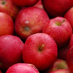 Apples are losing their shine among people who embrace an increasingly popular way of eating — called the low FODMAP diet — to improve their digestion and health.