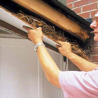 Man Removes Rotted Soffit From Roof