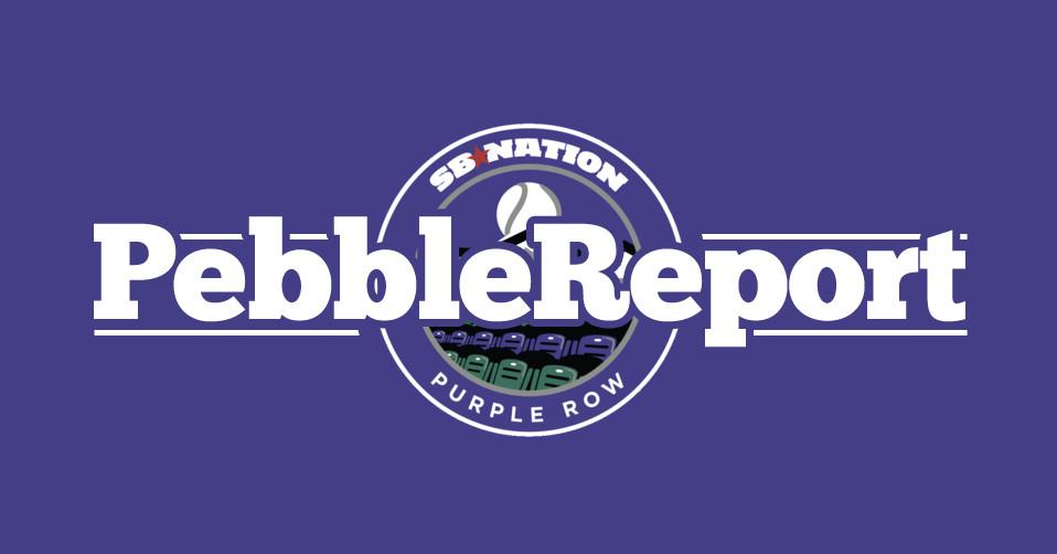 purple row pebble report 0 0.