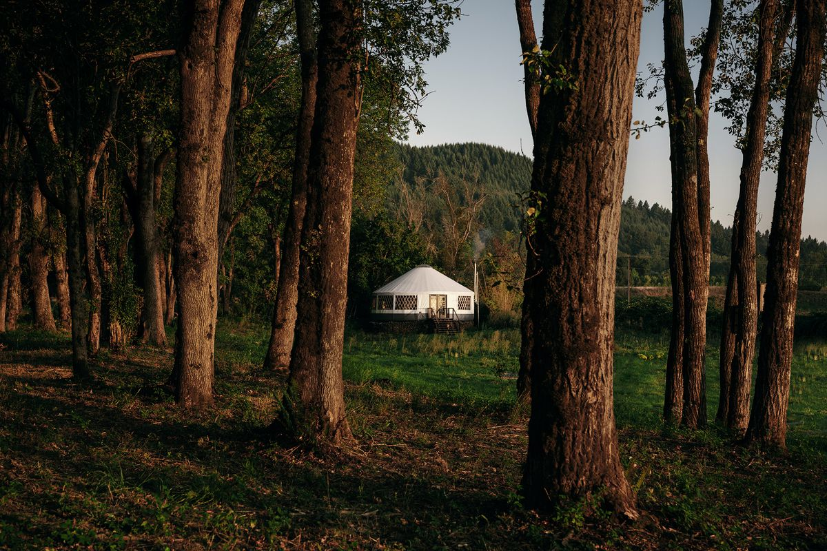 A tent-like white yurt sits in a grassy area in front of a wooded forest.