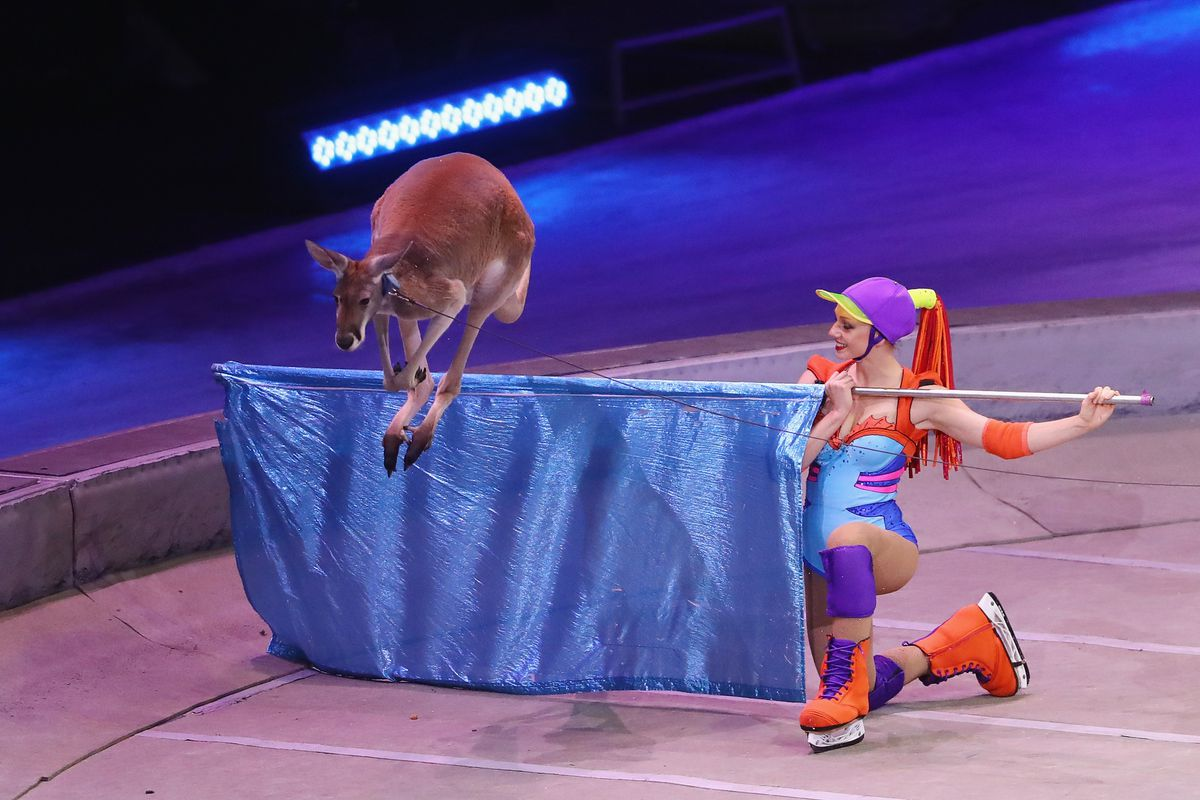 Ringling Bros Barnum and Bailey Circus Holds Final Show