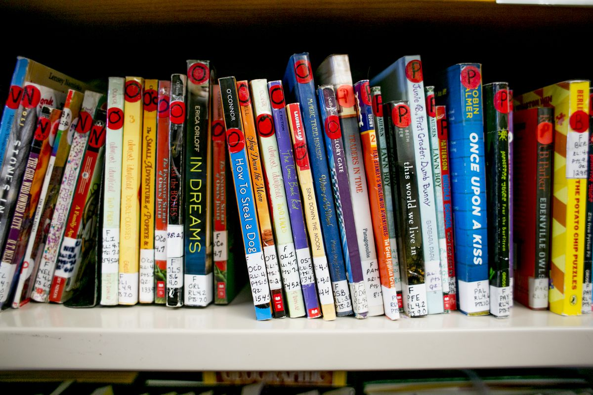 A school library in Detroit. Under a proposed law, every school library in the state would be required to have at least one librarian.