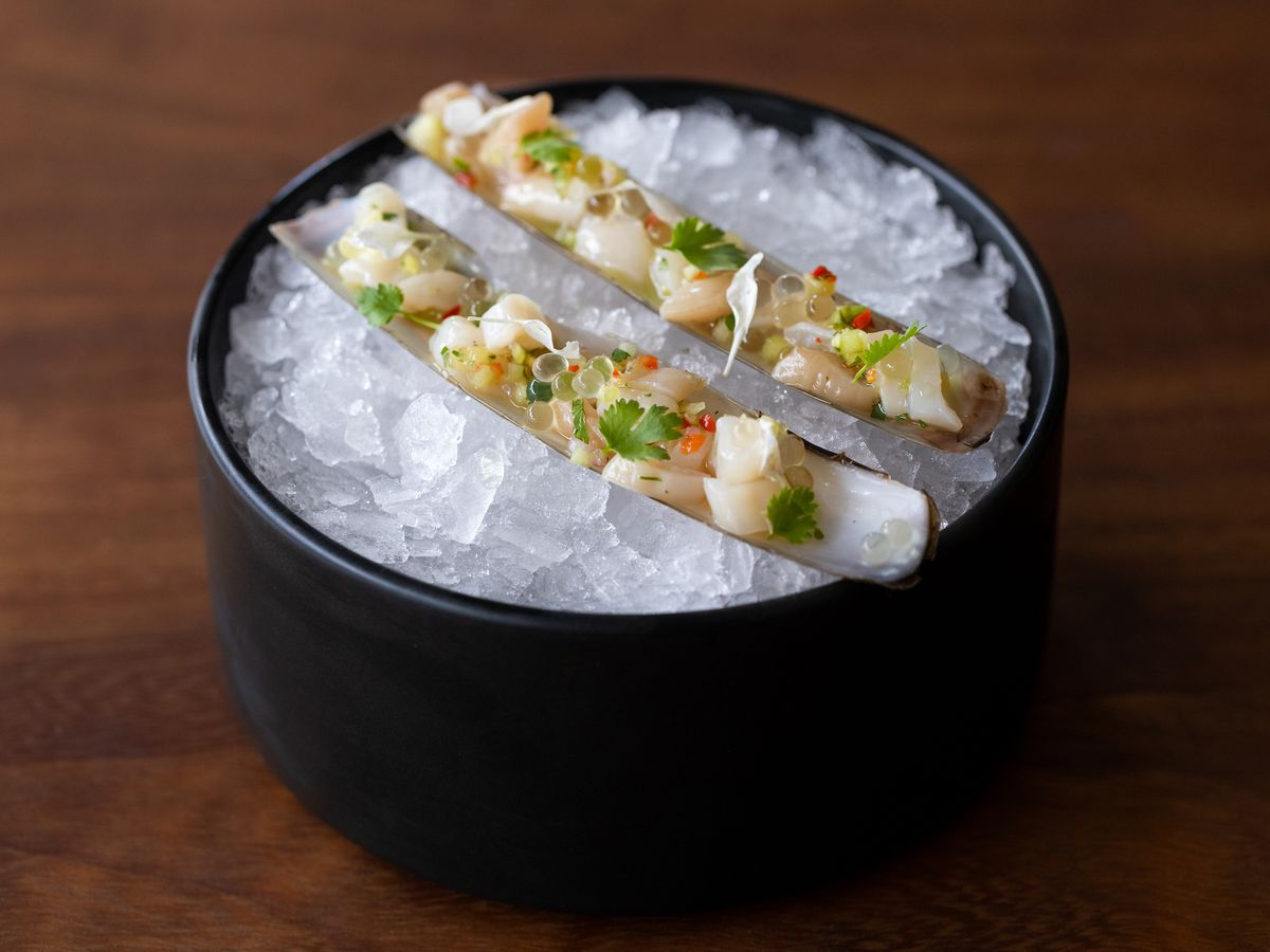 Razor clam ceviche, on ice in a bowl, from Ceviche Project.