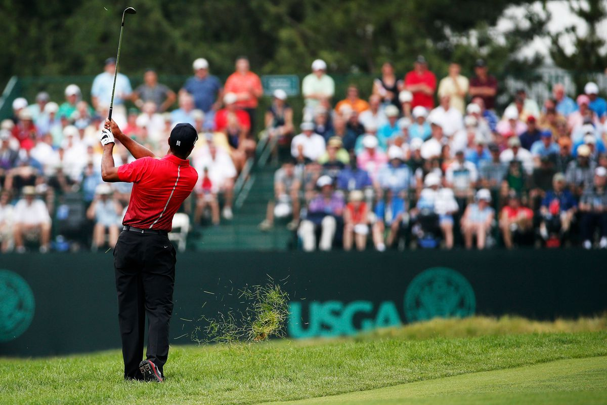 british open 2013 odds  tiger woods  rory mcilroy favored
