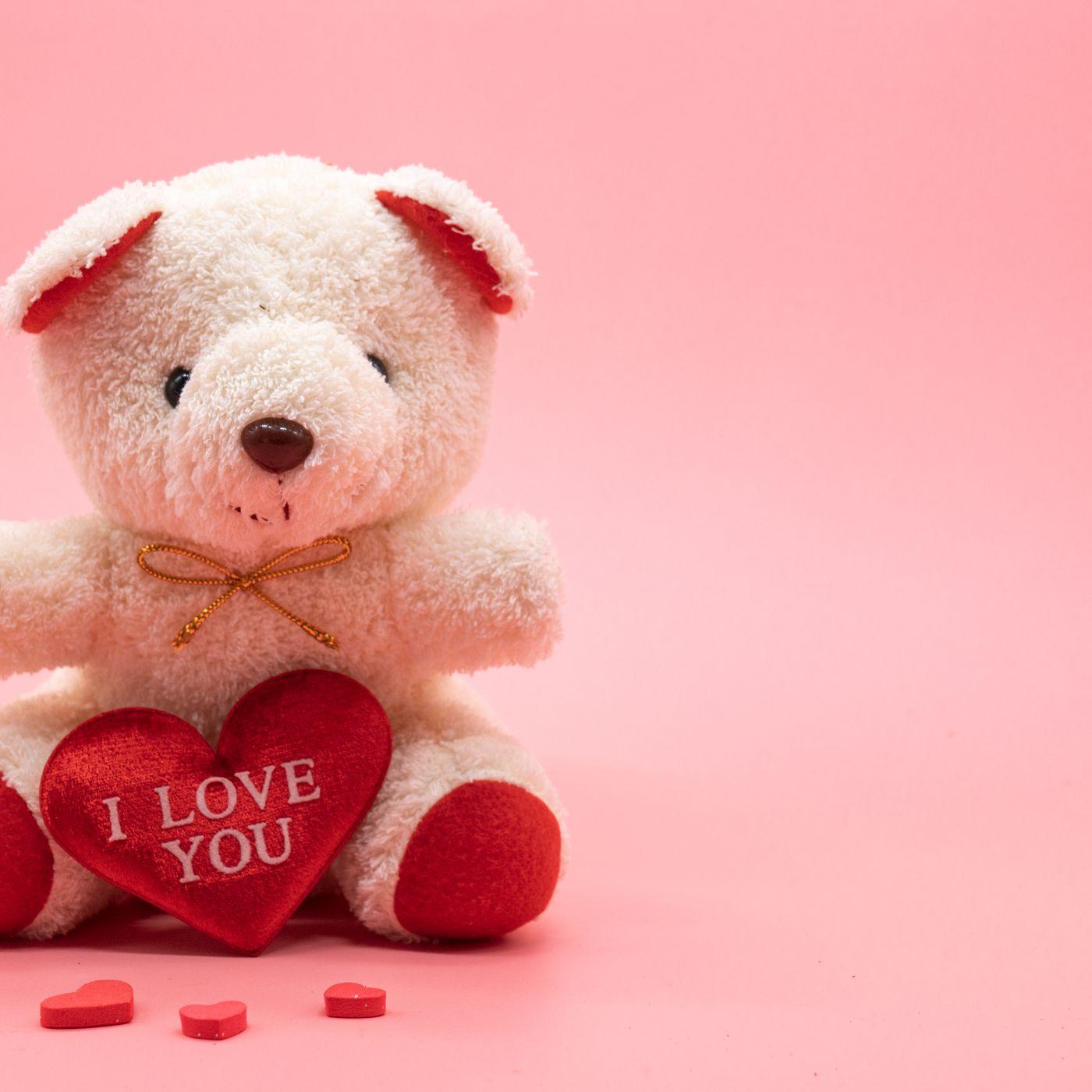 Teddy Bear Phots / Последние твиты от teddy bear times (@teddybeartimes).