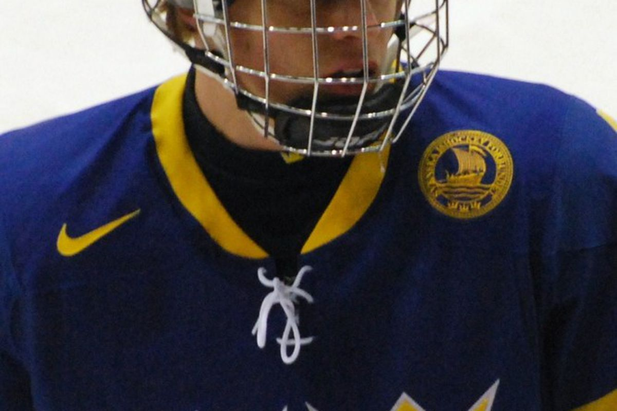 """Adam Larsson, the Oilers first overall pick. Image via <a href=""""http://upload.wikimedia.org/wikipedia/commons/d/de/AdamLarsson.JPG"""">upload.wikimedia.org</a>"""