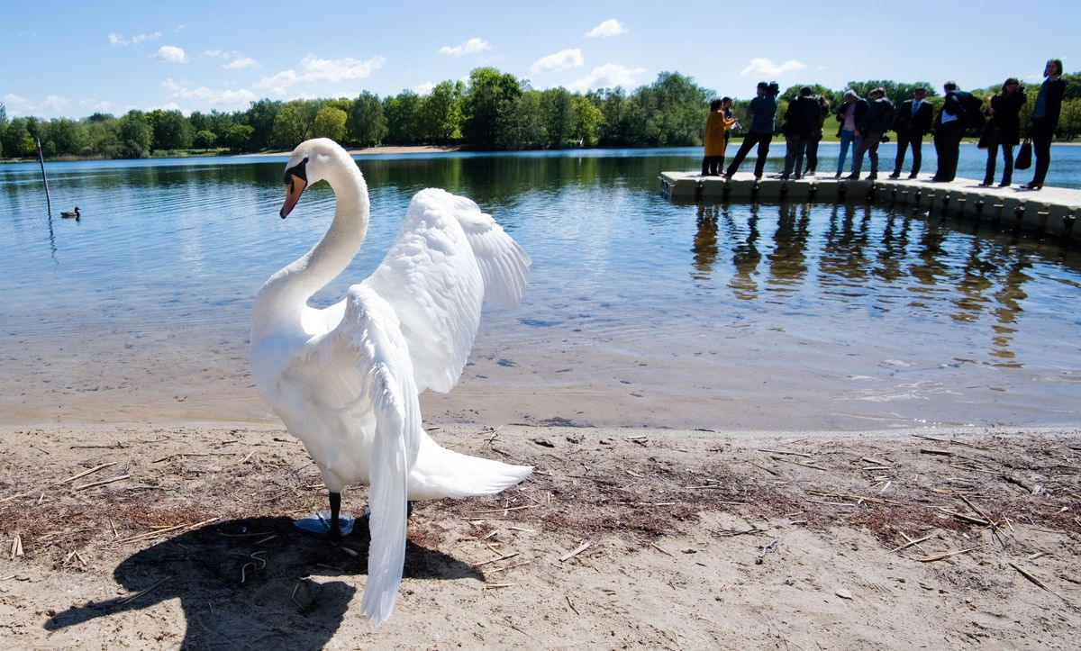 Lower Saxony's bathing waters are clean