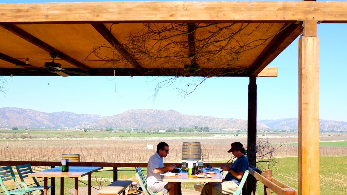 Discovering Two Dining Destinations in Mexico\'s Emerging Wine ...
