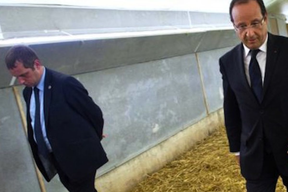 Francois Hollande, down at the foie gras farm.