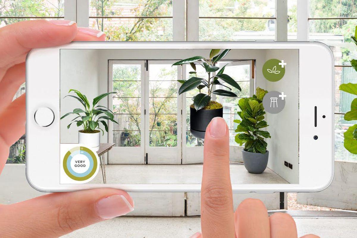 AR app for choosing houseplants
