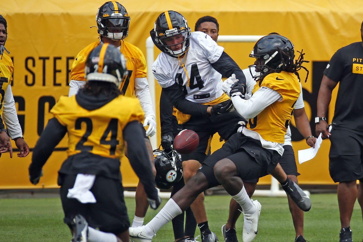 Pittsburgh Steelers Training Camp
